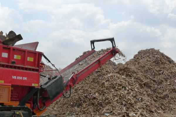 Wood & Biomass